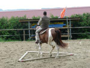 sandplatz_8_20100123_1997563209