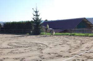 sandplatz_und_longierzirkel_20120225_1447020036